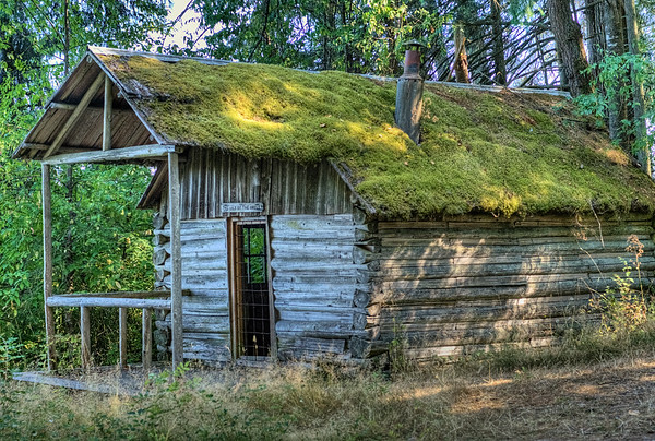 Settler's Cabin - BC Forest Discovery Centre, Duncan, BC, Canada