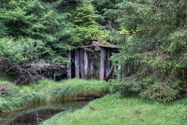 Forgotten and Abandoned Bridge - Port Renfrew, BC, Canada
