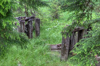 """Forgotten and Abandoned Bridge - Port Renfrew, BC, Canada Visit our blog """"Bridge Out Ahead"""" for the story behind the photo."""