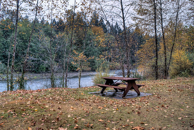 """Cowichan River - Vancouver Island, BC, Canada Visit our blog """"The River Runs Through Us All"""" for the story behind the photos."""