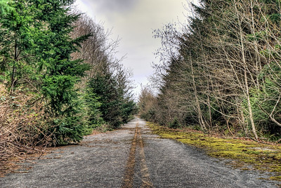 """Forgotten Road - Vancouver Island BC Canada Visit our blog """"Detour Ahead"""" for the story behind the photos."""