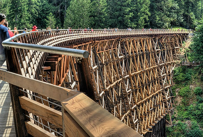 "Kinsol Trestle - Cowichan Valley, Vancouver Island, BC, Canada Visit our blog ""A Bridge Of Hope"" for the story behind the photos."