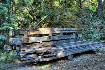 "Kinsol Trestle - Cowichan Valley, Vancouver Island, BC, Canada Visit our blog ""100 Year Old Timber"" for the story behind the photos."