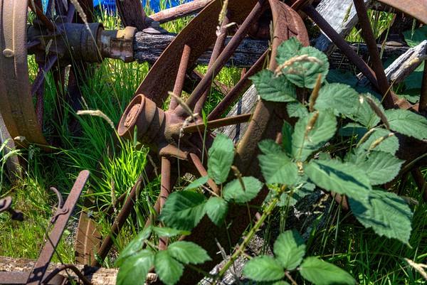 Rusty Farm Equipment - Metchosin Pioneer Museum, Vancouver Island, BC, Canada