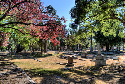 "Ross Bay Cemetery - Victoria, BC, Canada Visit our blog ""A New Era"" for the story behind the photo."