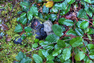 "Abandoned Shoe - Paldi - Cowichan Valley, Vancouver Island, BC, Canada Visit our blog ""No Shoes, No Luggage, No Service"" for the story behind the photos."