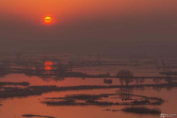 Sunrise on Spills | Восход на разливах