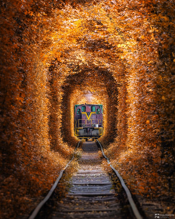 Tunnel of Love and Train | Туннель Любви и поезд