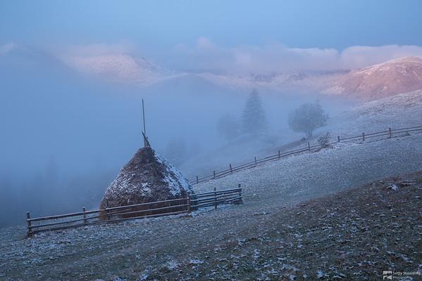 Frosty Morning on Kosarishche | Морозное утро на Косарище