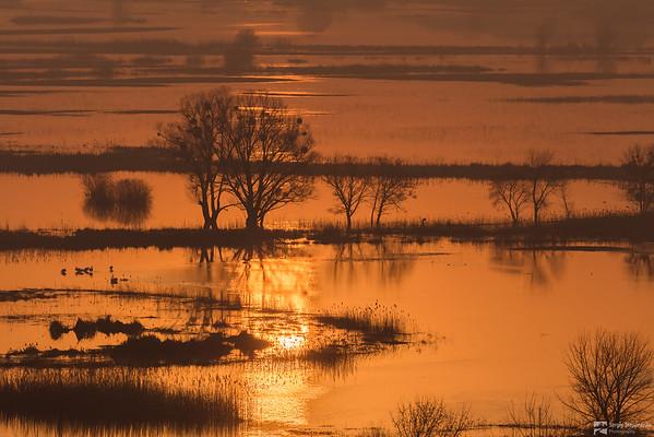 April Floods | Апрельские разливы