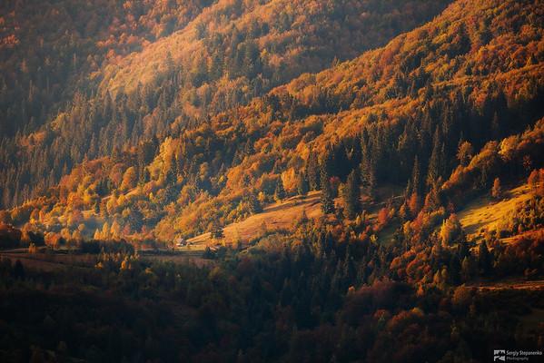 Autumn Palette | Осенняя палитра