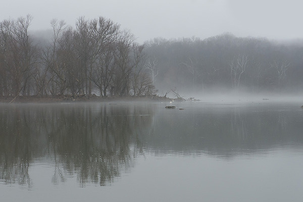 "Great Falls, Western Montgomery County, Maryland <br>January 13, 2013 <br><a href=""/SourceGalleries/2013/01-13-13/30340258_HvnnQG"">View photos</a> <br> <i>A peaceful, foggy, winter morning walk with an <a href=""http://anshome.org"" target=""_blank"">ANS</a> group  <br>along the Potomac River Trail and C&O Canal towpath.</i> <p> </p><hr>"