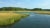 Herring River & salt marsh<br /> Bell's Neck Conservation Area, Harwich, Cape Cod, MA