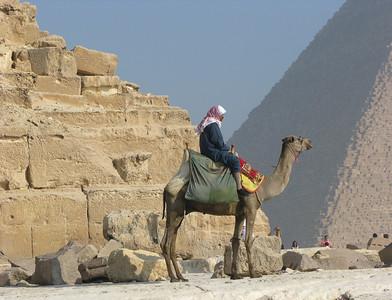 An Egyptian and his Camel at the Pyramids at Giza.
