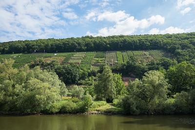 Wine country near Miltenberg, Germany.