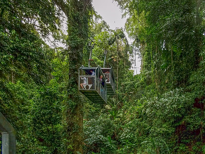 Up the cable car at the Veragua Rainforest.