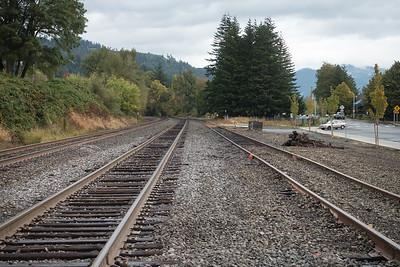 Eighty trains a day through Stevensom, WA.