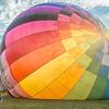 Quick Chek Air Balloon