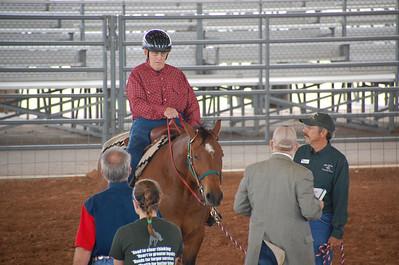 Equestrian 2014