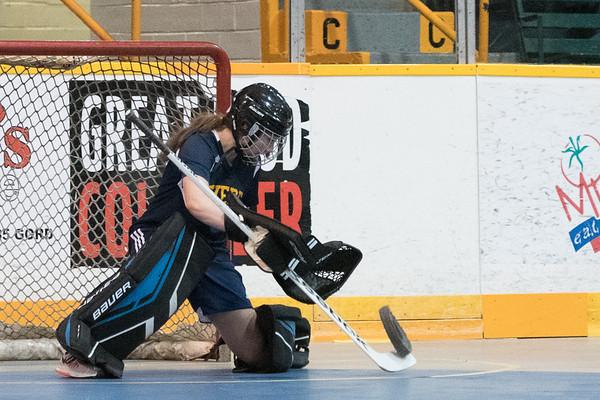 Floor Hockey 06-13-2017