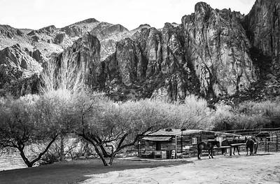 Arizona Ranch