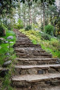 Creekside Stairway