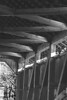 Cox Ford covered bridge.  Black & White and Colored Edges effects applied in Paint Shop Pro 10.