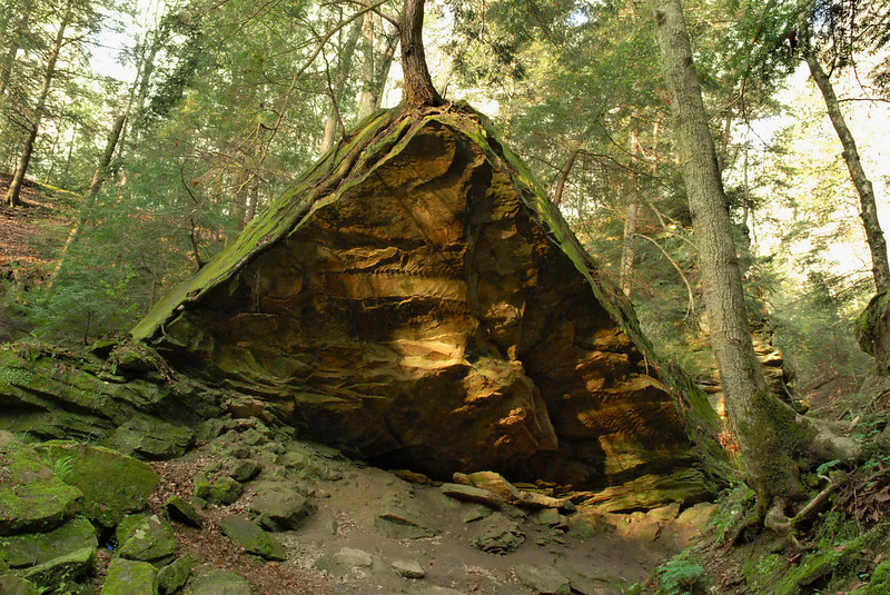 Triangle rock and trees, near the suspension bridge.