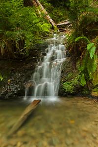 Tip Toe Falls, Portola Redwoods State Park