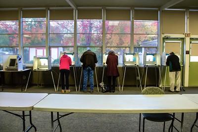 Election8109_VoteTrees