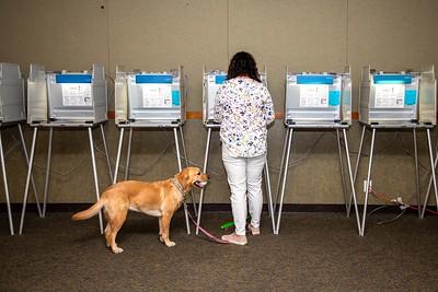 Voting-0002
