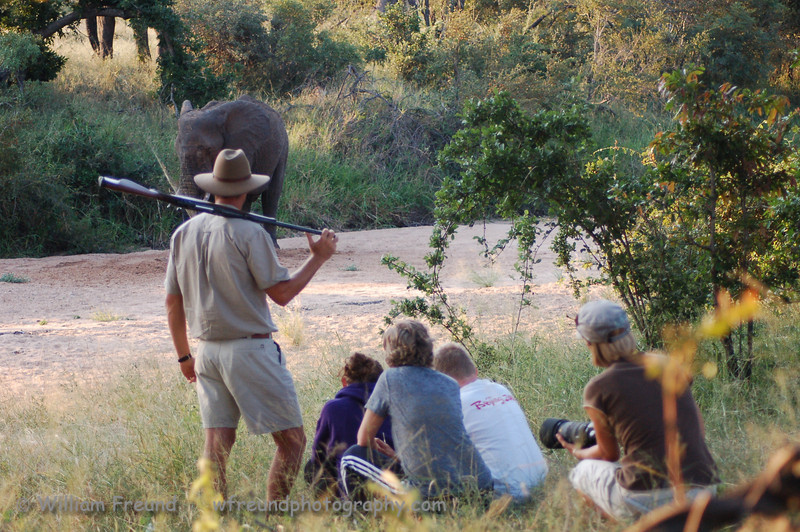 """Published in the Senalala Game Lodge website and the December 2009 Newsletter.   <a href=""""http://www.senalala.co.za"""">http://www.senalala.co.za</a>"""