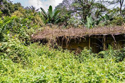Edib, Southwest Region, Cameroon Africa