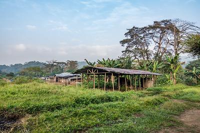 Baseng, Southwest Region, Cameroon Africa
