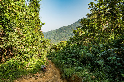 Road from Bermin to Bangem, Southwest Region, Cameroon Africa