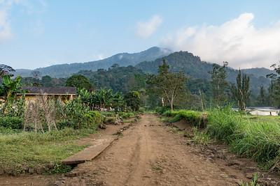 Mount Kupe, Nyasoso, Southwest Region, Cameroon Africa