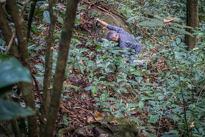 H-W climbing up steep hill. Mount Kupe. Nyasoso, Southwest Region, Cameroon Africa