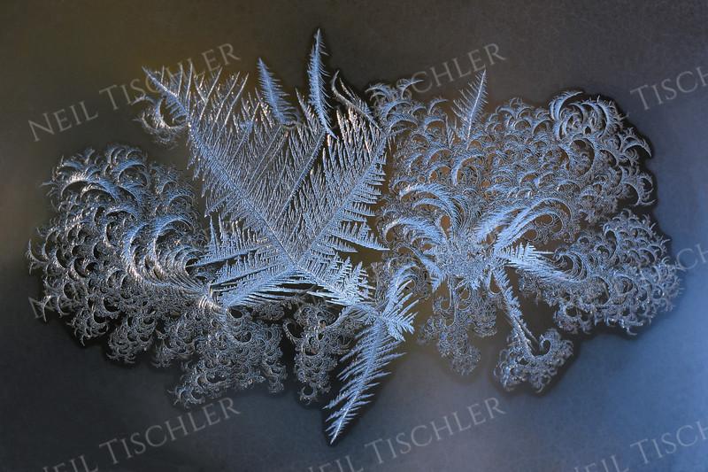 #1676  Window frost  -2°F on January 31, 2019