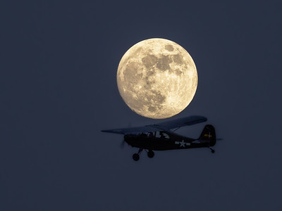 Fly Me Under the Moon