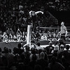 Dean Ambrose From the Top Turnbuckle