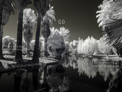 Infrared Agua Caliente
