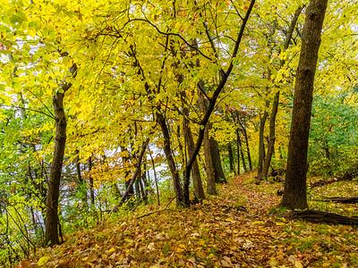Fall at Vadnais Lake