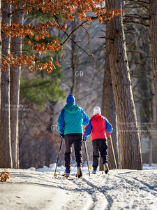 Cross Country Skiers