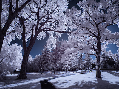 Infrared White Bear Lake