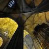 "Catedral de Sevilla<br><span style=""font-size:75%"">©Yangchen Lin</span>"