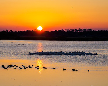 Merritt Island Sunrise