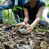 "soil sample for respirometry<br>Kibale National Park<br><span style=""font-size:75%"">©Yangchen Lin</span>"