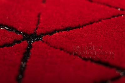 Ferrari Carpet Swatches