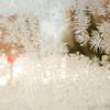 Winter campus scenes.