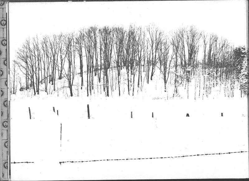 1959_elms_028